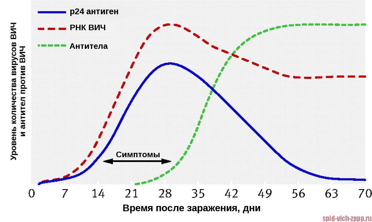 Иммунохроматографический анализ крови на вич Справка от фтизиатра 2-й Ширяевский переулок